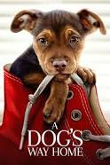 A Dog's Way Home Movie Review